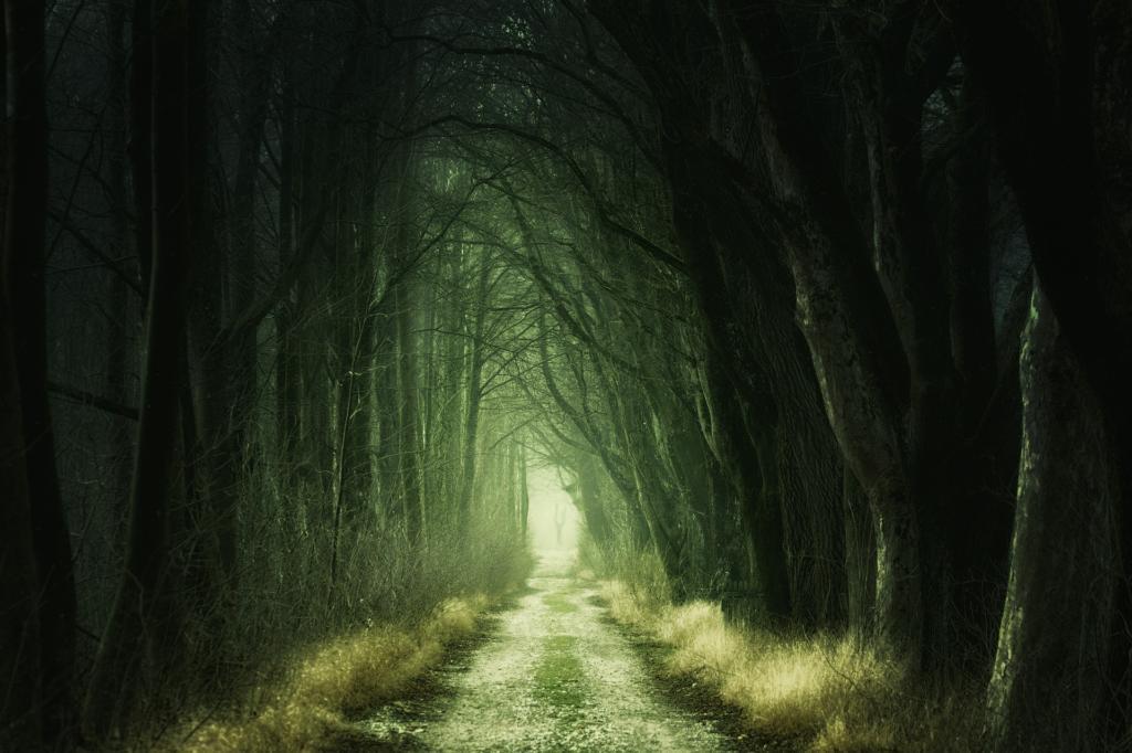 Как избавиться от кошмаров