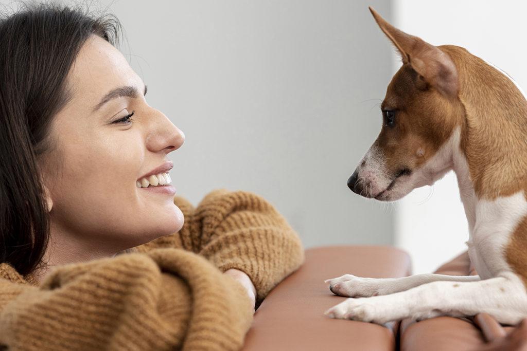 Проявляется ли эффект плацебо у животных?