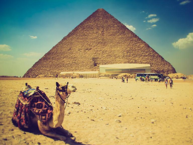 7 интересных фактов о современном Египте
