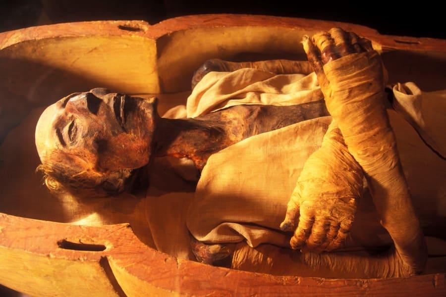 Египетской мумии выдали паспорт