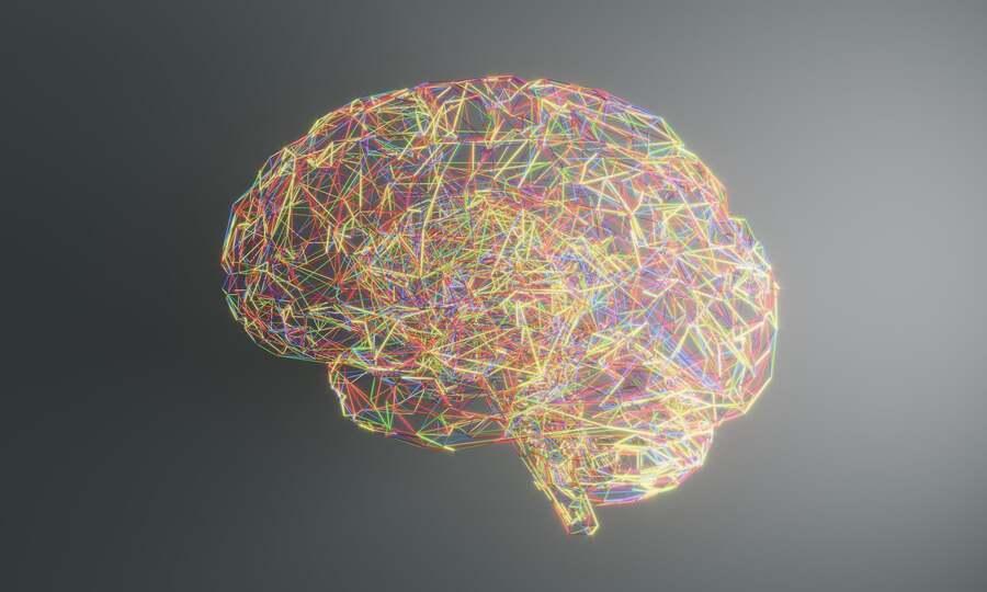 Миф № 6: Человек использует не более 10% мозга