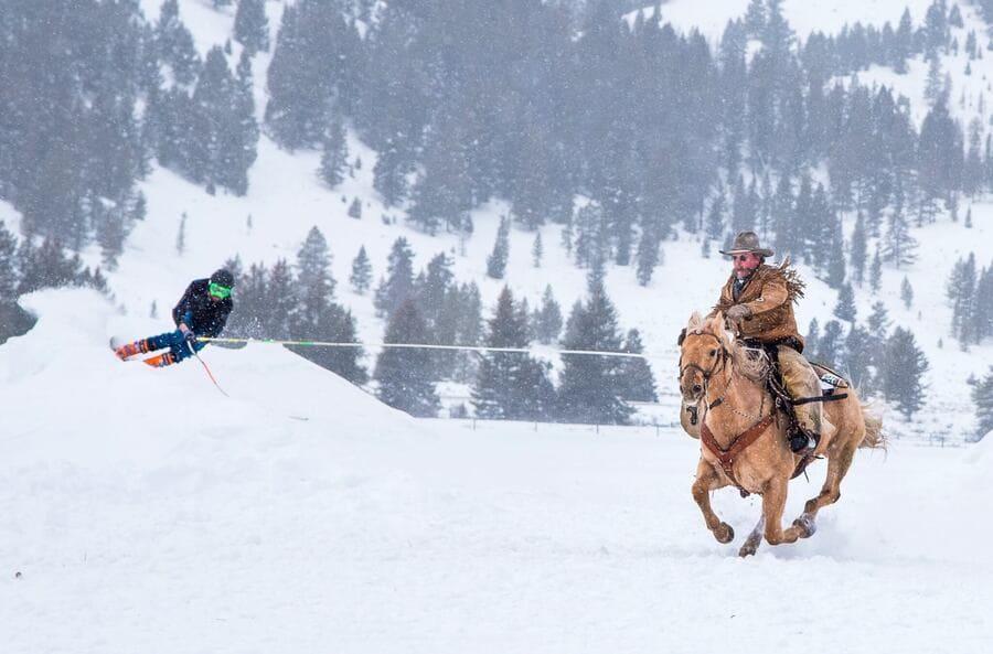 Скиджоринг – необычный зимний вид спорта